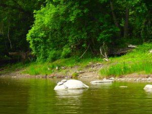 Kayaking Yoga Meditation Jun 13-18-8