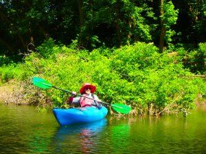 Kayaking Yoga Meditation - Solstice - Jun 21 2018-8