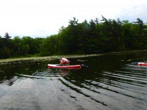Kayaking Yoga and Meditation June 16, 2018-24