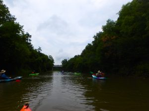 Kayaking, Yoga & Meditation - August 22, 2018-3