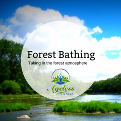 Forest Bathing with Ageless Arts Yoga