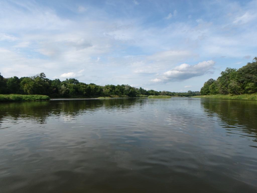 ARTC - River Day Aug 20, 2019-86