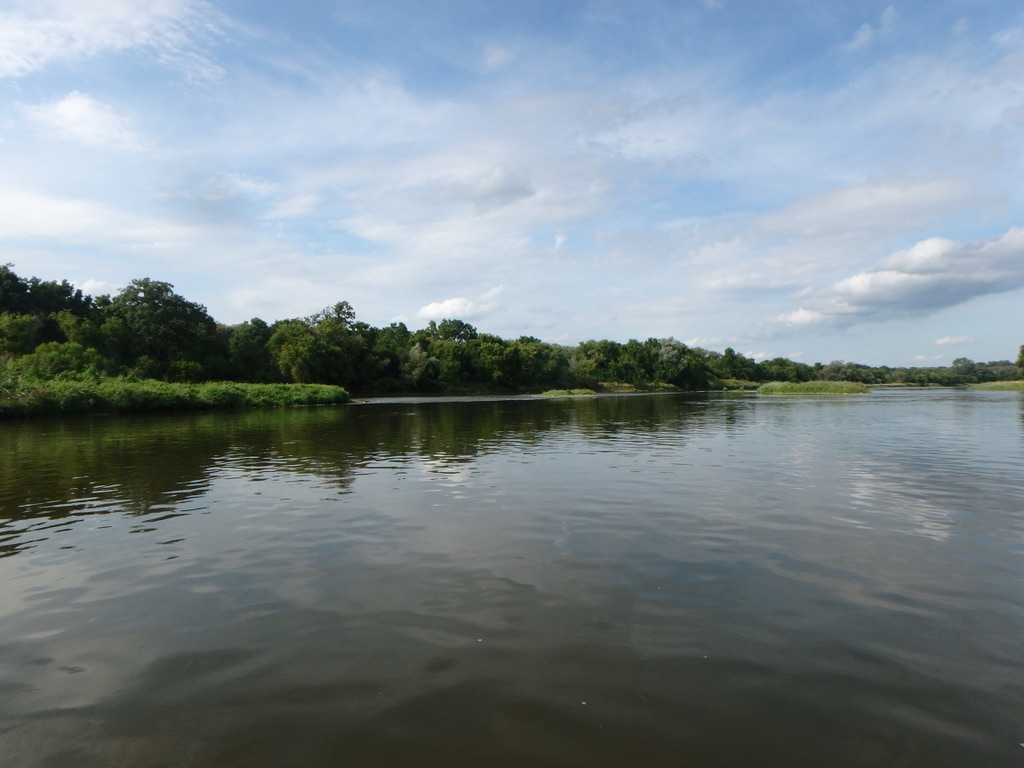 ARTC - River Day Aug 20, 2019-87