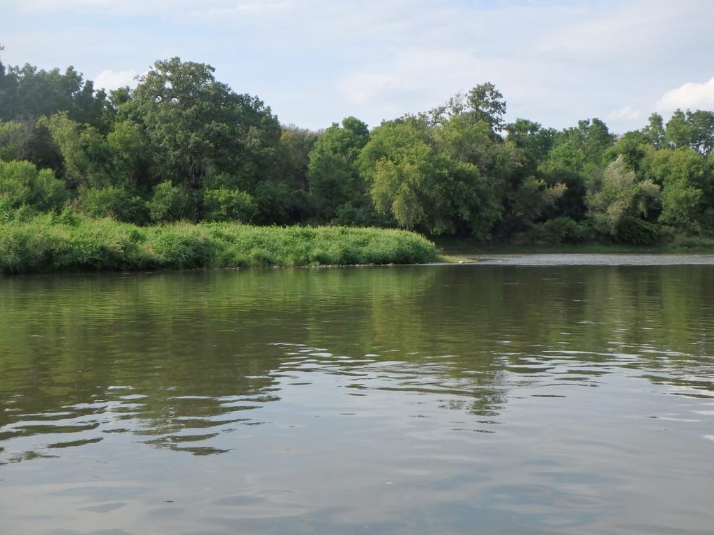 ARTC - River Day Aug 20, 2019-88
